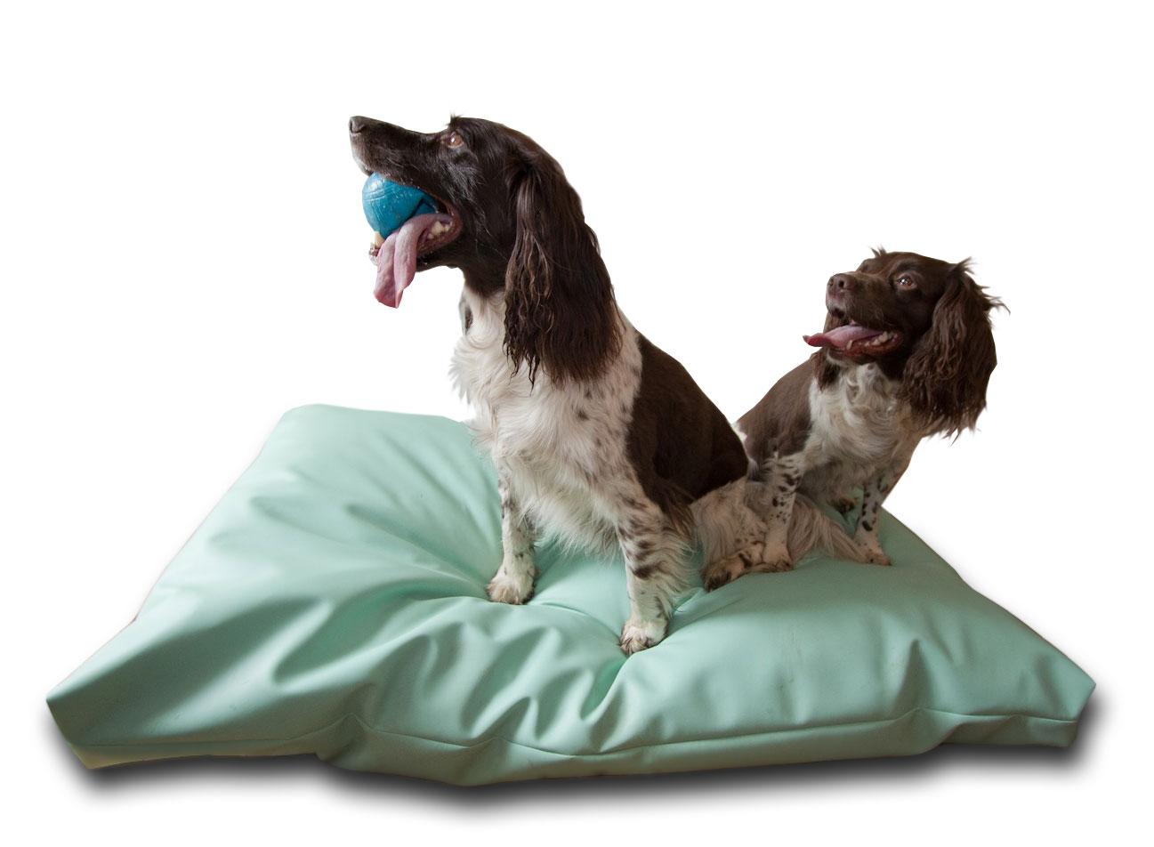 XL-comfort-pets-01-amazon